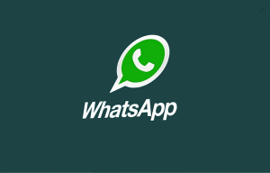 Backup and Restore Chat History in WhatsApp Messenger for Windows Phone, Android, and iPhone