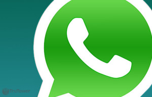 WhatsApp Messenger Has 350 Million Monthly Active Users According to CEO